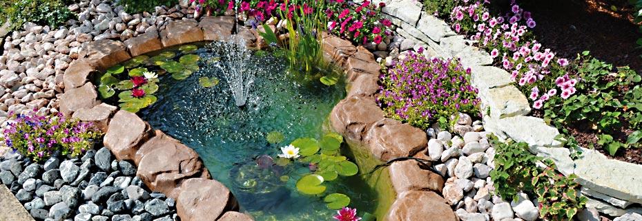 Chi siamo paccagnella christian giardini creazione manutenzione irrigazione piante - Laghetti da giardino ...