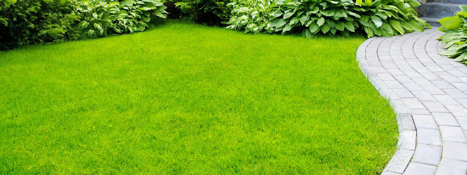 sfalcio erba giardiniere padova venezia2